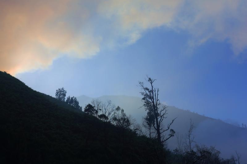 15 дней: Борободур-Бромо-Иджен-Комодо-Вамена-Кракатау
