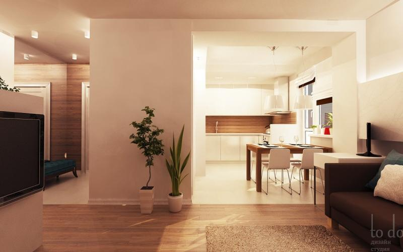 Гостиная кухня прихожая дизайн